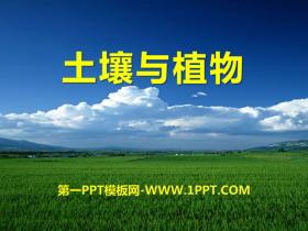 《土壤与植物》PPT课件