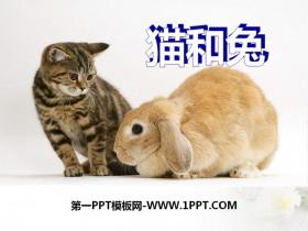 《�和兔》PPT�n件