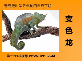 《变色龙》PPT下载