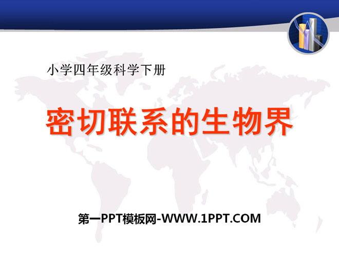 《密切联系的生物界》PPT