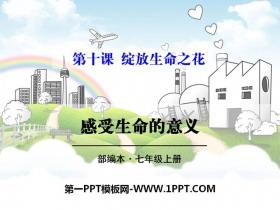 《感受生命的意义》PPT课件