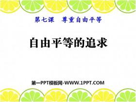 《自由平等的追求》PPT课件下载