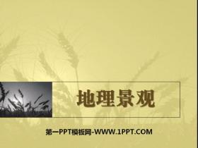 《地理景观》PPT课件
