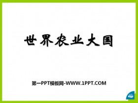 《世界农业大国》PPT课件