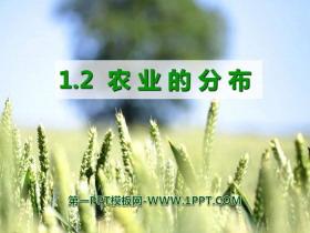 《农业的分布》PPT课件