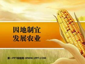 《因地制宜发展农业》PPT课件