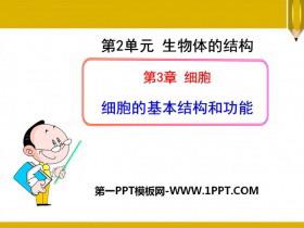 《细胞的基本结构和功能》PPT课件
