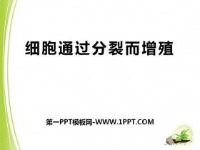 《细胞通过分裂而增殖》PPT