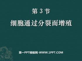《细胞通过分裂而增殖》PPT课件
