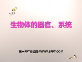 《生物体的器官、系统》PPT