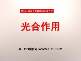 《光合作用》PPT课件