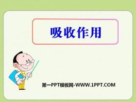 《吸收作用》PPT
