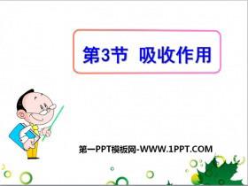 《吸收作用》PPT课件