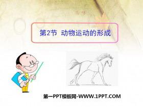 《动物运动的形成》PPT