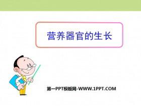 《营养器官的生长》PPT