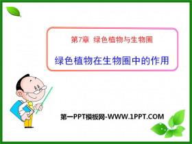 《绿色植物在生物圈中的作用》PPT