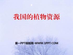 《我国的植物资源》PPT课件