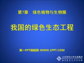 《我国的绿色生态工程》PPT