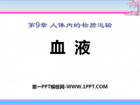 《血液》PPT课件