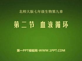 《血液循环》PPT课件