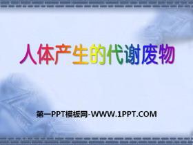 《人体产生的代谢废物》PPT课件