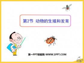 《动物的生殖和发育》PPT