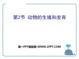 《动物的生殖和发育》PPT课件