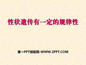 《性状遗传有一定的规律性》PPT课件