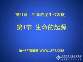 《生命的起源》PPT下载