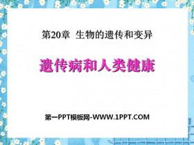 《遗传病和人类健康》PPT