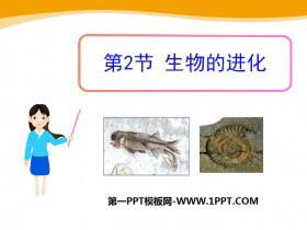 《生物的进化》PPT