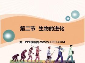 《生物的进化》PPTtt娱乐官网平台