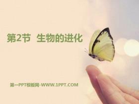 《生物的进化》PPT课件tt娱乐官网平台