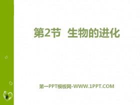 《生物的进化》PPT教学课件