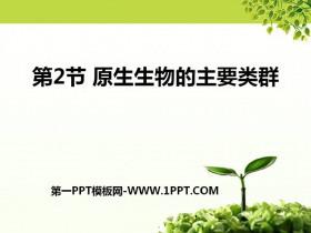 《原生生物的主要类群》PPT课件