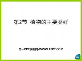 《植物的主要类群》PPT课件