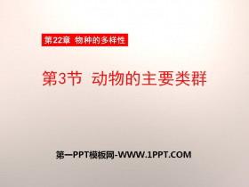 《动物的主要类群》PPT课件