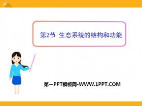 《生态系统的结构和功能》PPT