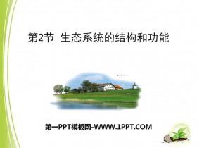 《生态系统的结构和功能》PPT课件