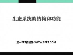 《生态系统的结构和功能》PPT课件tt娱乐官网平台