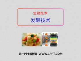 《�l酵技�g》PPT�n件