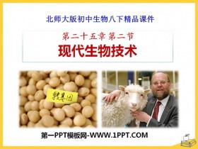 《现代生物技术》PPT