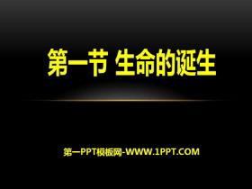 《生命的诞生》PPT课件