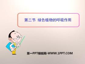 《绿色植物的呼吸作用》PPT课件
