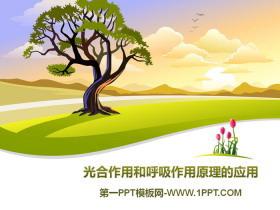 《光合作用和呼吸作用原理的应用》PPT