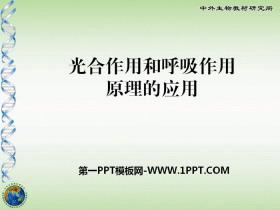《光合作用和呼吸作用原理的应用》PPT课件