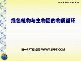 《绿色植物与生物圈的物质循环》PPT