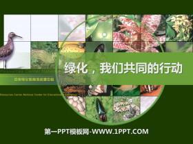 《绿化,我们共同的行动》PPT课件