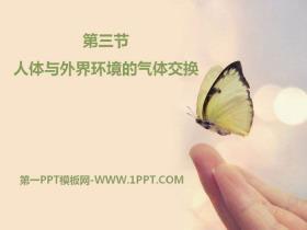 《人体和外界环境的气体交换》PPT