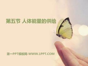《人体能量的供给》PPT课件